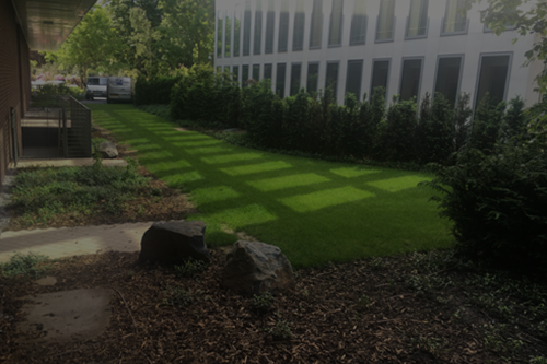 Hard & Soft landscaping
